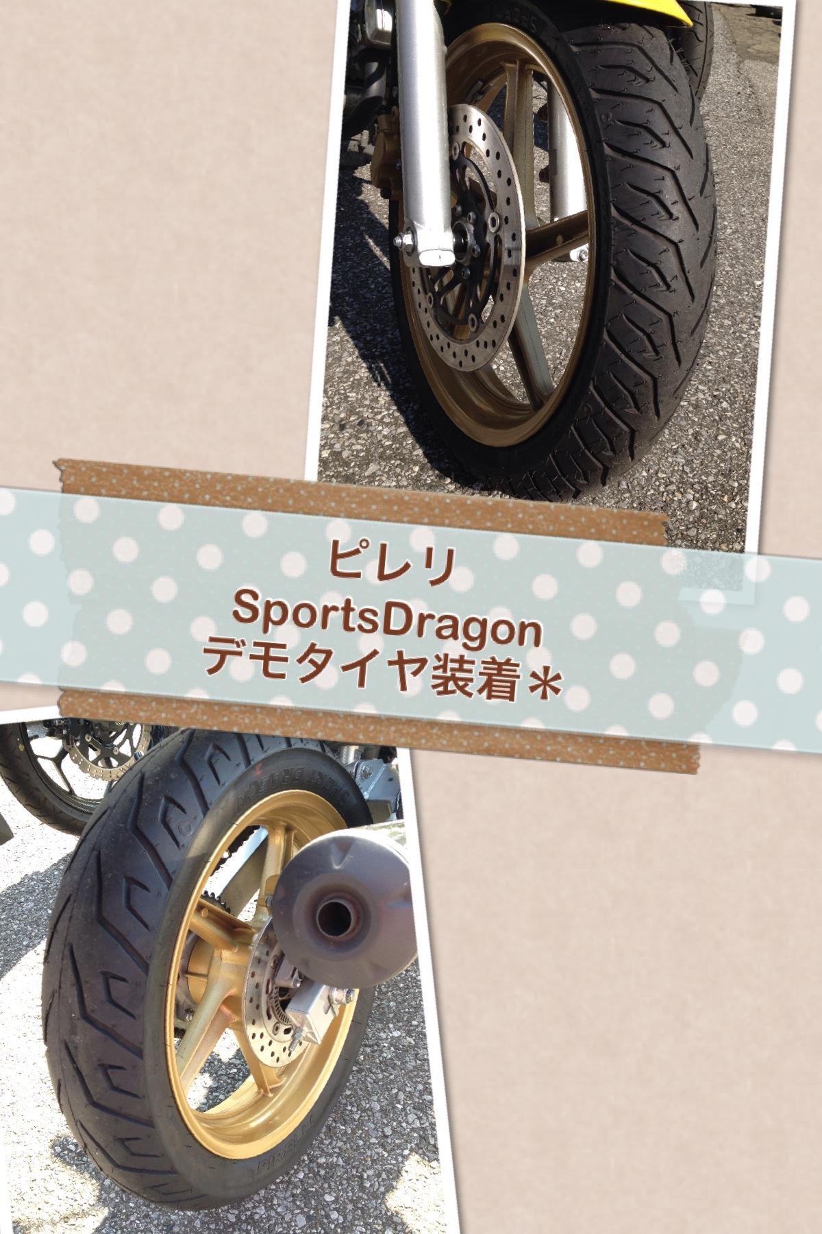 sportsdragon